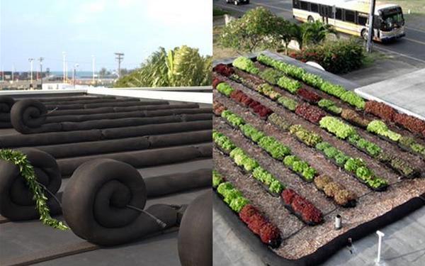 Hoe kunnen we #duurzaamheid op daken versneld uitrollen? Zo dus.. #daklandbouw @Benjijduurzaam @ellen_oomen @urgenda http://t.co/wAH4kmcXcM