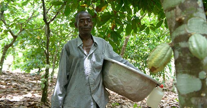 The challenge to create more sustainable farms: Empowering #smallholder farmers in W.Africa: http://t.co/fHdlbsHWkt http://t.co/4U7HZpcbPL