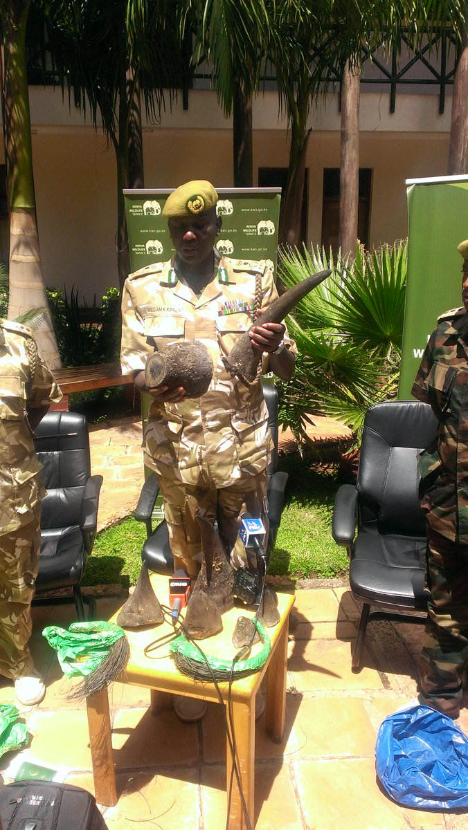 A Vietnamese man on transit from Maputo to Hanoi arrested at JKIA with 10kgs of rhino horns. http://t.co/xc46qTZcGq