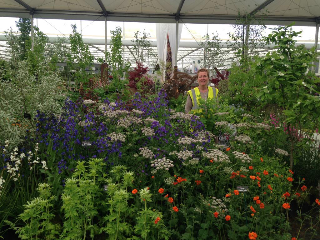 @hardyplants #GreatPavilion #RHSChelsea @The_RHS @Rosyhardy62 a must see when visit. http://t.co/VoRLsLQUhO