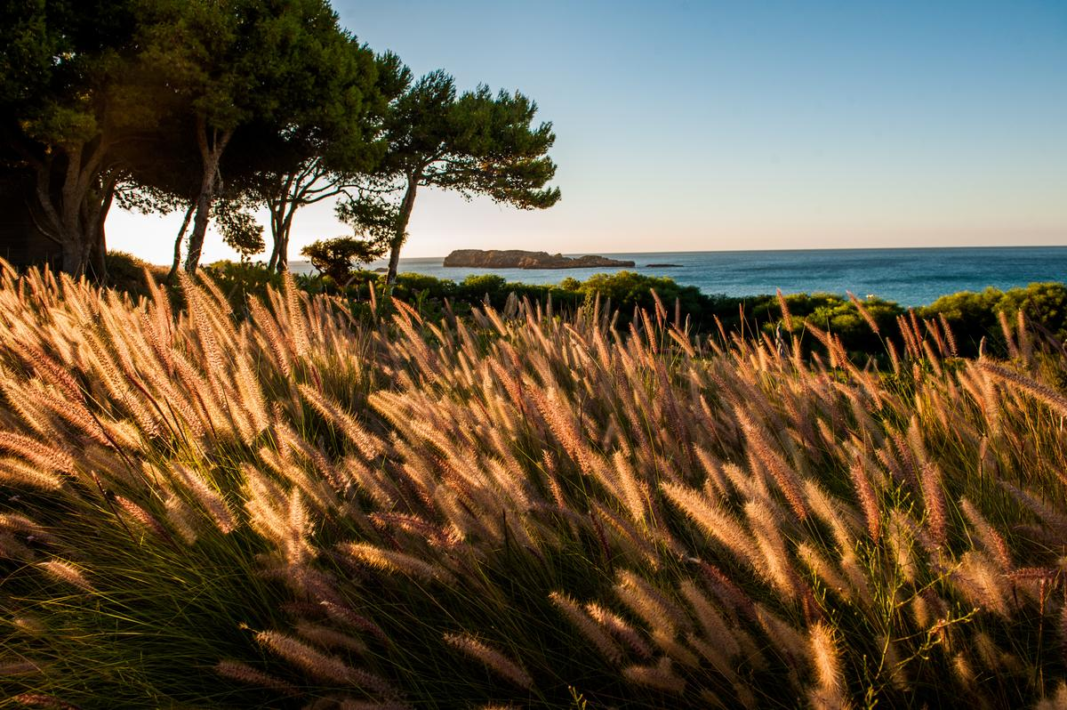 Explore the Algarve, Portugal's wild coast: @LolaAkinmade