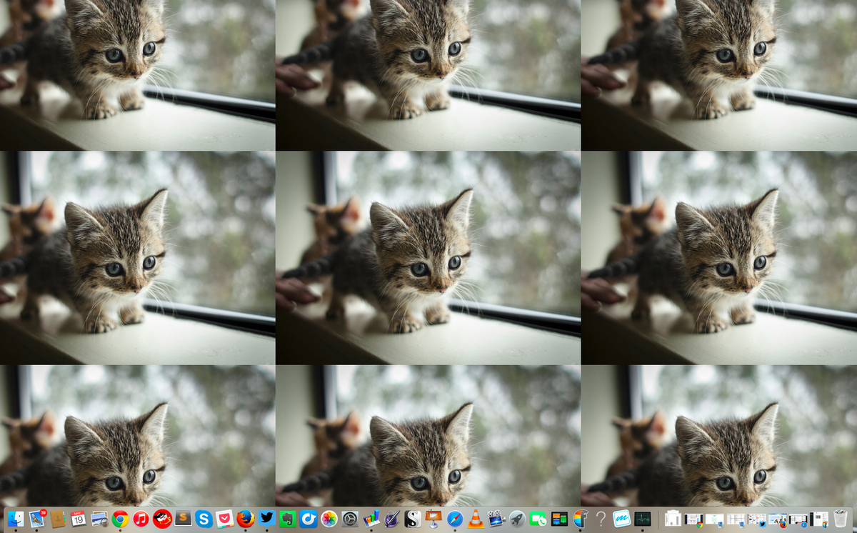 Adding more people won't make your project go faster, might as well add kittens instead. http://t.co/HCwevVpJGH