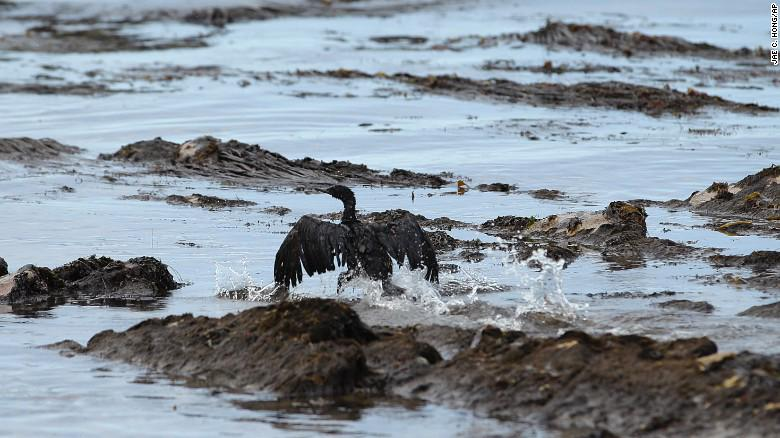 #SantaBarbaraOilSpill is 5X worse than originally thought, from 21,000 gal to now 105,000 gal> http://t.co/t4lE0v0xyP http://t.co/nnUbVWkMUt
