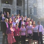 A sea of pink in Parliament today! Standing together to support @PinkShirtDayNZ and prevent bullying in NZ http://t.co/rL9BOxPcIS