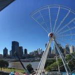 The Mohawk of Brisbane. @612brisbane http://t.co/M6VTVGwVQX