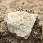 This bit of stone pushes back the date of the earliest known human tool use by 700,000 years http://t.co/geDmaqKwSc http://t.co/Us4w8EkKHr