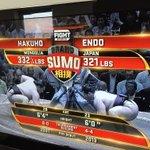 なんか、英語になるとえらいかっこいいな???? 不思議〜 #sumo #Japanese #fighters #白鵬 http://t.co/SO4bpdS0vz