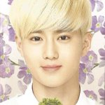 [SCAN] Nature Republic EXO notebooks - SUHO / SEHUN / CHANYEOL (3p) Cr: blizzard http://t.co/el56KTh822
