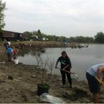 Ailsa Francis: Massive re-planting rejuvenates Brewer Pond http://t.co/CrdWqJG9NY #ottnews http://t.co/jSzKuK9bnT