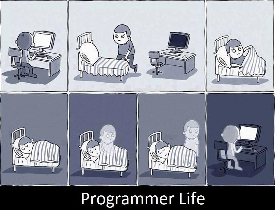 """Me ha gustado mucho esta tira > """"La vida del programador"""" http://t.co/79vmdDK2a8"""