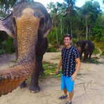 ICYMI: B.C. man's elephant selfie - or is it an elphie? - garners worldwide attention http://t.co/e7g4kCzhh2 http://t.co/WZFmPN4uZI