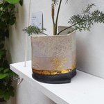 Missing this #Gold and black pot, sold last weekend to a good home :) #Brighton @artistshouses @mewsartstudio http://t.co/Bg0Le4fx3o