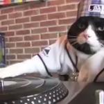 #TGIF — Long weekend vibes with DJ Kitty: https://t.co/4cbRKOBwUi #MemorialDayWeekend http://t.co/EnqawzZNu7