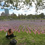 PHOTOS: 37,000 flags cover a section of Boston Common this weekend http://t.co/YH2aCtrDLj #MemorialDay http://t.co/0mxB2YqjJy