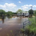 We talked to home owners north of Edinburg who say their properties have flooded for over 2 months. @kgbt #rgv http://t.co/BgQsELV47D