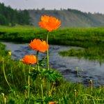 Ийм сайхан монгол эх орноо хайрлахгүй байхын аргагүй... http://t.co/u1PnzIpvbw