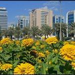 صباح الخير..صورة من بلادي للطيبين... http://t.co/D8R8ckX50l