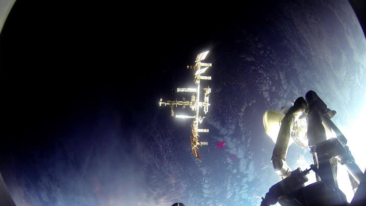 скачать документальные фильмы про космос 2016 через торрент