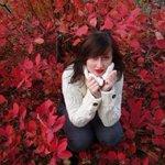 Пресс-секретарь комбрига Мозгового, Анна Асеева, мать троих детей! Погибла сегодня! Светлая память! http://t.co/9PdDh6fFJE