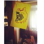 Iplt20...finals.. MI vs CSK...????my yellow fever #csk http://t.co/cOeUOIkfpk