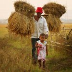 Farmers to get mobile updates on weather, crops, market rates http://t.co/T8i9W2HzI2 http://t.co/kKyqYMoWkq
