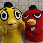 <千秋楽の様子>ひよの山と赤鷲に、お子様のファンからお手紙を頂きました!手紙を手に喜びのポーズ。 #sumo http://t.co/k6i4TXVM5k