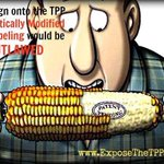 @forthleft If Andrew Robb & Tony Abbott sign #TPP, all GMO labelling will be outlawed http://t.co/i1yZuje0P8 #AusPol http://t.co/TeEI8Uqee5