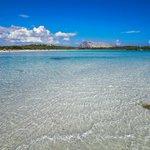 Altro che Maldive e Caraibi...tutta lItalia è fantastica!!! #Sardegna ;) #CalaBrandinchi #Italy #Expo2015 http://t.co/vUUclIM8GE
