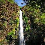 """Domingo relajado desde las cascadas del """"Cora"""" en San Blas, Nayarit. #EstoEsNayarit http://t.co/v5696RFDr3"""