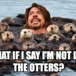 Watching Foo Fighters like #radio1weekender http://t.co/VuBeBUEUU2