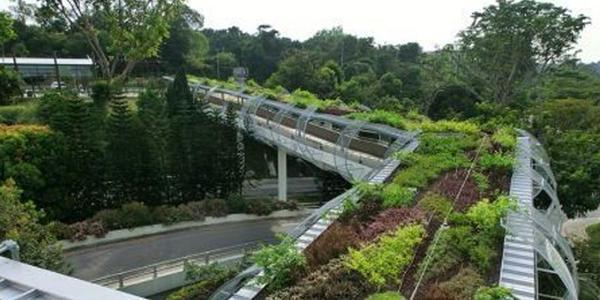 Een stad vol #duurzaamheid/#groen een brug te ver? Niet als het aan deze brug ligt...  @thenaturalcity @IVNNederland http://t.co/O70L1Ie8Ib