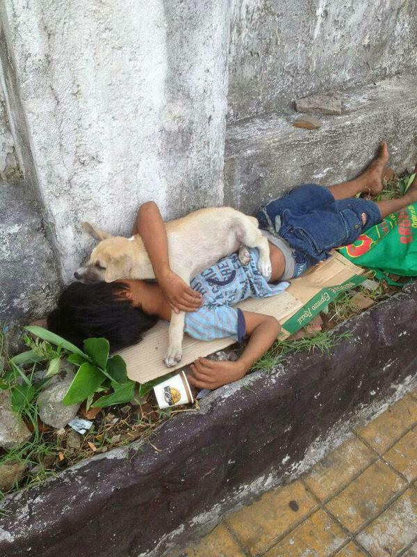 A dog doesn't care if you are rich or poor. All he knows is that he loves you very much. http://t.co/n7Qt307aCQ