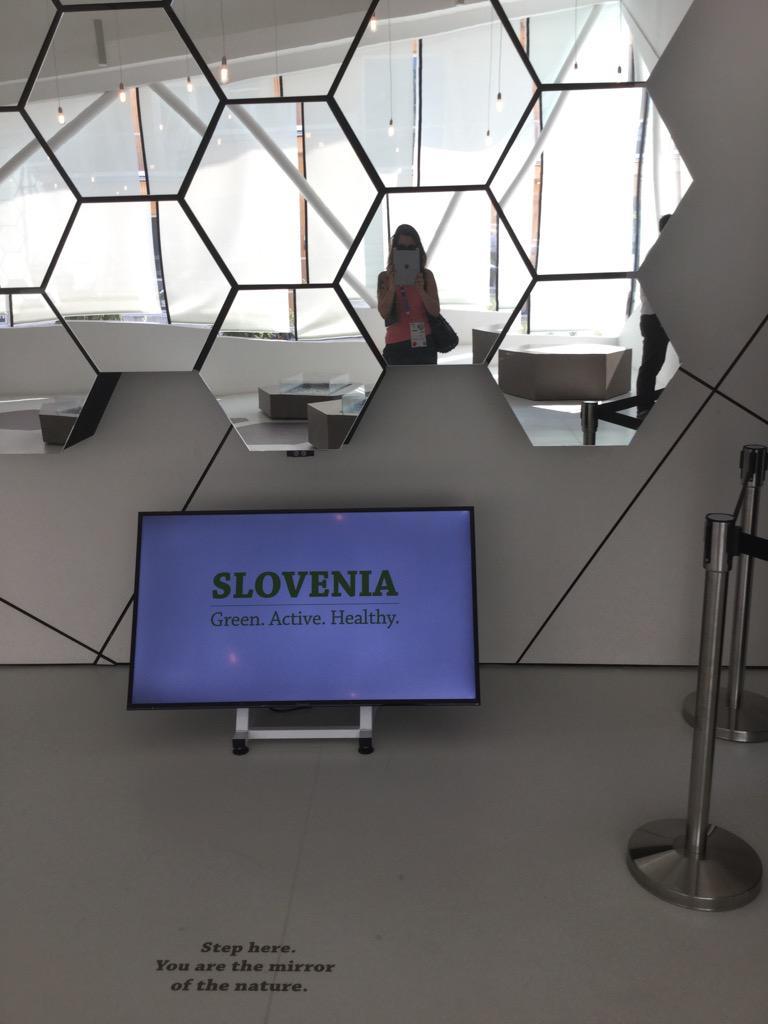 RT @GiorgiaBurzz: Se le #api si estinguessero, all'umanità rimarrebbero solo 4 anni di vita @SloveniaInfo @ExpoSlovenia #gNeLab http://t.co/1B4mf7faDA