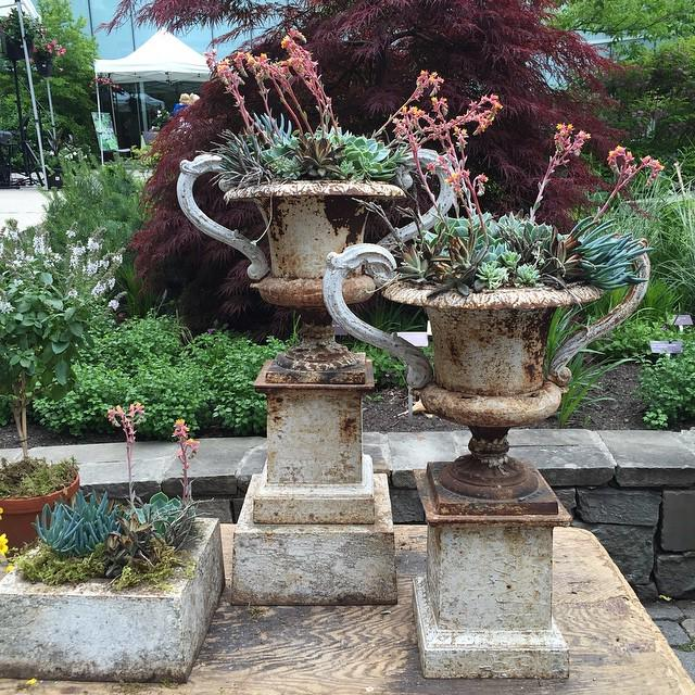 Yum. Hits all my high points. #gbfling15 #planters #succulents #vintage http://t.co/nqtdl9Tq3m http://t.co/qN9V6ijFUA
