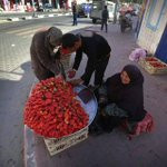 an old women selling strawberries in gaza. just look at them strawberries tho! http://t.co/hWEDTv1HJ3