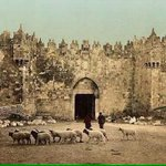 Damascus Gate, #Jerusalem 1910 and today. You can see prosperity in the first one. There goes the myth of #Palestine http://t.co/bAjiglGD5A
