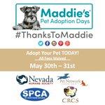 FREE pet adoptions! RT 2 save lives! @rgj @fox11reno @KRNV @Aces @KOLO8 @KTVN @RNRtwits @CityofReno @cityofsparks http://t.co/V6GOMqHsXi