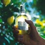 ロクシタンより、新メンズシリーズ「セドラ」- シトラス&ウッドの魅力的な夏の香り - http://t.co/jH54me0ehu http://t.co/mwTSwwQNmx