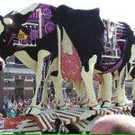 Laten we de koe als dier blijven zien ipv economisch model #zembla http://t.co/t8x0gRx0hs