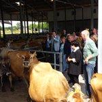 #zembla eenzijdige blik op melkveehouderij? Vandaag opening Kwatrijnstal in Kaatsheuvel. @nieuwsez @sharon_dijksma http://t.co/YwlCtsGdQ2