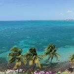 ???? RT @AndyDread: @PuertoRicoPUR Tropical paradise #PuertoRico ???????????? http://t.co/rwqZK8zd5H