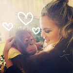 RAWR! RT #KhloeKardashian hangs out with exotic animals in #Dubai! http://t.co/EXqub0sHOq http://t.co/OsD1aT1THH