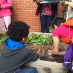 Planting our little seedlings and hoping for a good harvest in the summer @HRSB_Official #SJAM http://t.co/A1KxXMtKPF