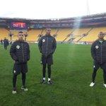 #PanamáSub20 en el reconocimiento de cancha del Westpac Stadium donde jugará sus dos primeros duelos del mundial. http://t.co/CrgKE7nfTH