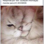 @plantao190 me ajudem! http://t.co/vHZ8d74vQs