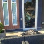 Deer runs into #Kamloops Shark Club window http://t.co/jvVhfHfIZz http://t.co/JXaH2rcS37