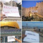 ❤️ دعم لسمو الامير علي من #فلسطين الصمود #الامير_على_للفيفا @AliBinAlHussein #AliForFIFA #FIFA #Palestine #Jordan http://t.co/dIe6mOHEQO