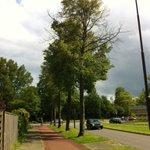 Vijf bomen in Apeldoorn vergiftigd, gemeente doet aangifte bij de politie: APELDOORN - Vijf… http://t.co/s6wixcNqpm http://t.co/Behg0olhgj