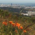 Dont miss the #SF Green Film Festival! http://t.co/OM4bRODn1i http://t.co/i1nBXuwSvT