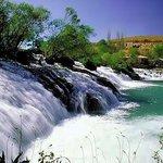 صباح الخير لبنان من نهر العاصي http://t.co/A5J9uHVHD5